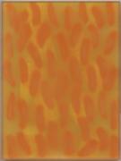 20x15-07-n.41-mini